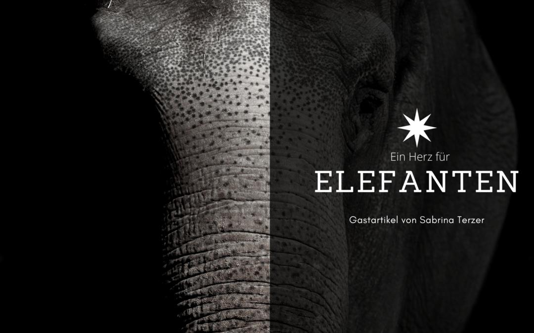 Ein Herz für Elefanten